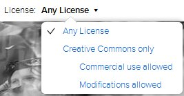 image license options